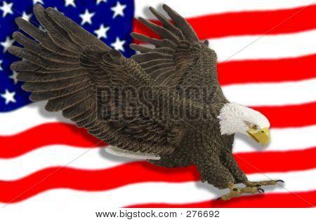 American Eagle & Flag