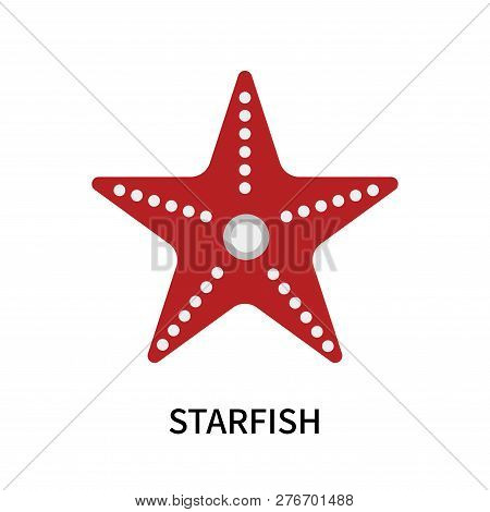 Starfish Icon Isolated On White Background. Starfish Icon Simple Sign. Starfish Icon Trendy And Mode