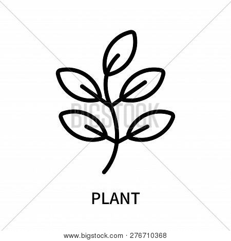 Plant Icon Isolated On White Background. Plant Icon Simple Sign. Plant Icon Trendy And Modern Symbol
