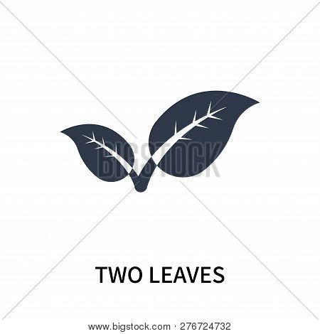 Two Leaves Icon Isolated On White Background. Two Leaves Icon Simple Sign. Two Leaves Icon Trendy An