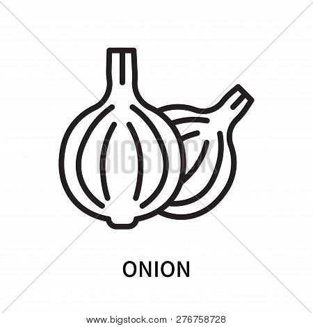Onion Icon Isolated On White Background. Onion Icon Simple Sign. Onion Icon Trendy And Modern Symbol