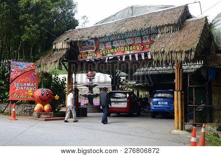 Genting Highlands, Malaysia- Dec 03, 2018: Strawberry Leisure Farm At Genting Highlands, Malaysia. G