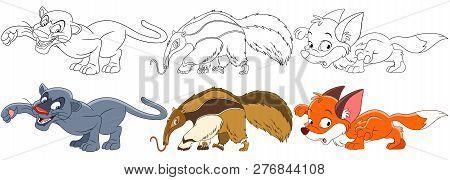 Cartoon Animal Set. Collection Of Wild Predators. Panther (puma, Cougar), Anteater, Fox. Coloring Bo