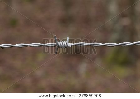 Close Up Of A Single Strand Of Barbed Wire