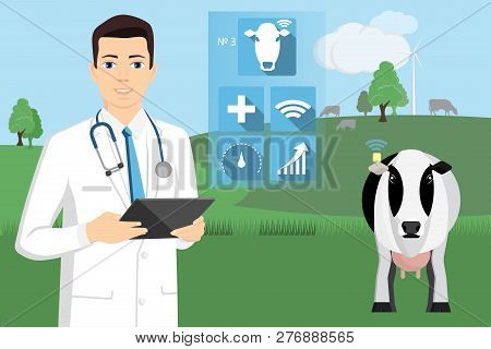Veterinarian With Digital Tablet On A Cow Farm. Internet Of Things In Cattle Breeding. Monitoring Th