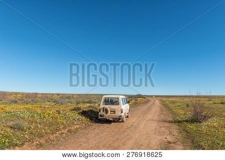 Nieuwoudtville, South Africa, August 28, 2018: Tourist Vehicles In A Field Of Wildflowers At Matjies