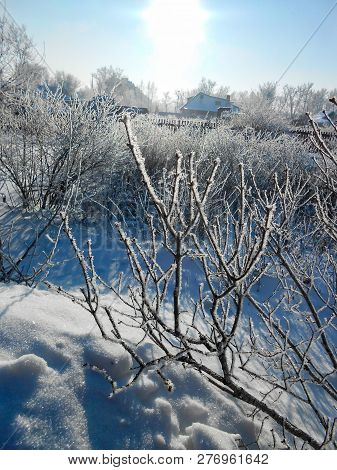 the beginning of spring, pulling up the ice crust on the snow, countryside, bare trunks of birches, twigs of bushes in thawed, traces poster