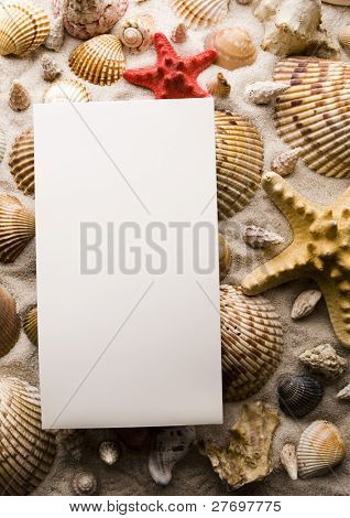 Shell, sand & sheet of paper