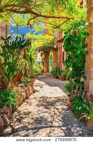 Idyllic View Of Mediterranean Garden With Way To Stone House