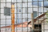 Mushroom barbed wire cage inside detention Within steel cage, nick iron net wall wire metal square grid fence to prevent poster