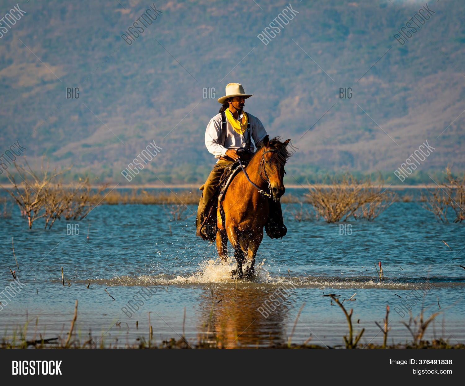 Western Cowboy Riding Image Photo Free Trial Bigstock