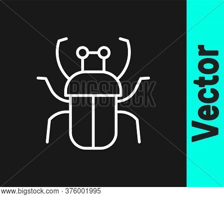 White Line Stink Bug Icon Isolated On Black Background. Vector