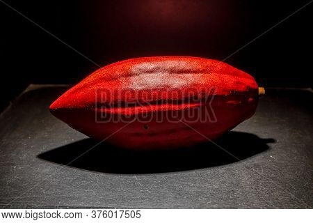Decorative Red Cocoa Bean On Black Background. Coffee Beans Background. Top View.