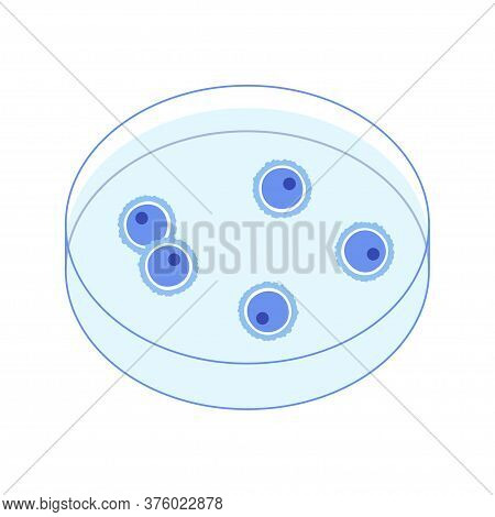 Woman Egg Cell Icon. Fertilisation, Gynecology And Genetic Testing. Human Sexual Reproductive System