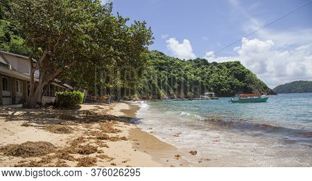 View Of The Sandy Shore Of The Caribbean Sea With Seaweed Ships. The Island Of Tobago. Subtropics Of