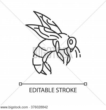 Bee Pixel Perfect Linear Icon. Small Flying Insect With Sting. Beekeeping, Apiculture Thin Line Cust