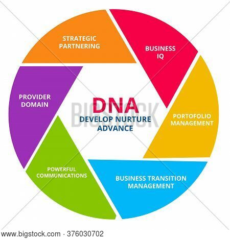 Dna Develop Nurture Advance Business Iq Portfolio Management Business Transition Management Powerful