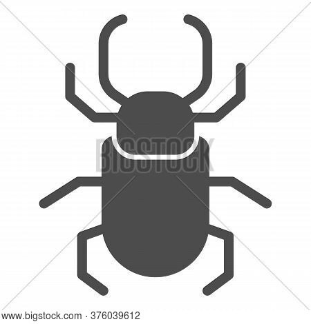 Beetle Stag Solid Icon, Insects Concept, Stag-beetle Sign On White Background, Large Beetle With Bra