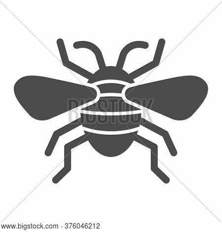 Insect Solid Icon, Insects Concept, Bee Sign On White Background, Flying Insect Icon In Glyph Style