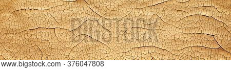 Detailed cracked soil showing a dry desert land scorched in the heat causing cracks. Global warming or Climate change concept.