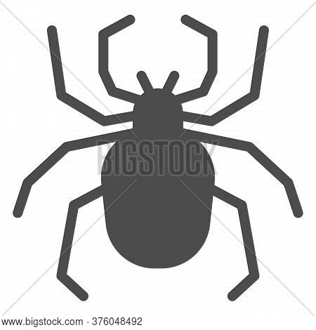 Spider Solid Icon, Insects Concept, Scary Arachnid Insect Sign On White Background, Spider Silhouett
