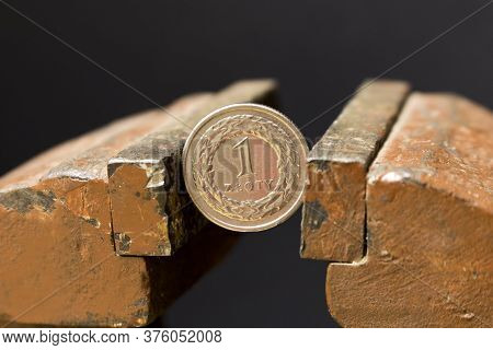 1 Zloty Coin In A Metal Vise. Concept Of Economic Problems. Selective Focus. Close Up