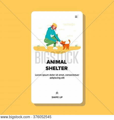 Animal Shelter Girl Feeding Homeless Cat Vector