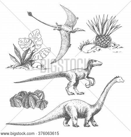 Beautiful Set With Cute Vector Dinosaur Illustrations.