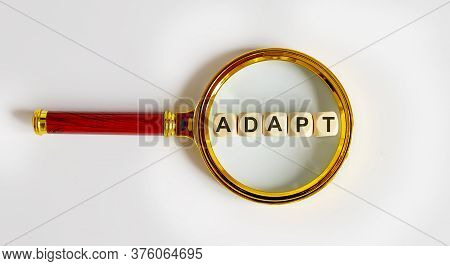 Wooden Blocks With The Text: Adapt On A Magnifying Glass.
