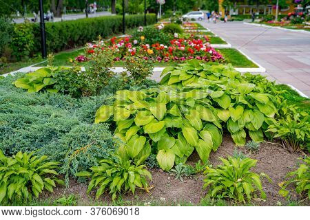 Gardening Landscape And Landscaping Design As A Perennial Garden Lawn With A Flowerbed And Ornamenta