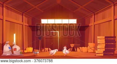 Barn Interior With Chicken, Farm House Inside View. Wooden Ranch With Haystacks, Sacks, Fork, Huge G