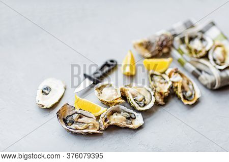 Fresh Opened Oysters Close-up On Gray Background With Sliced Lemon And Ice. Healthy Sea Food. Gourme