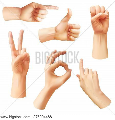 Realistic Hand. Various Gestures Human Hands, Ok, Thumb Up And Pointing Finger, Pinch And Fist. Opti