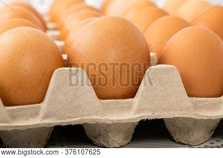 Row Of Brown Chicken Eggs In Egg Carton On The Table. Whole Eggs Are Among The Most Nutritious Foods