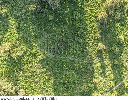 Aerial View Of Nature Area With Grass, Trees, Hiking Pathways And Animal Trails. Beauty In Nature