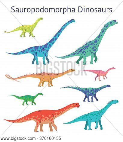 Set Of Sauropodomorpha Dinosaurs. Colorful Vector Illustration Of Dinosaurs Isolated On White Backgr