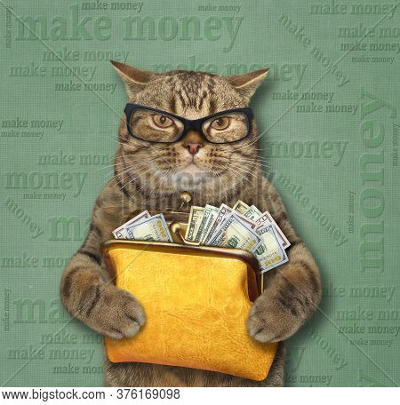 The Beige Cat In Glasses Is Holding A Big Yellow Leather Purse Full Of Dollars. Beige Background.