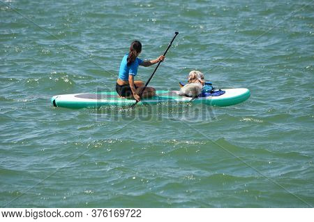 Young woman paddle boarder and her canine companion