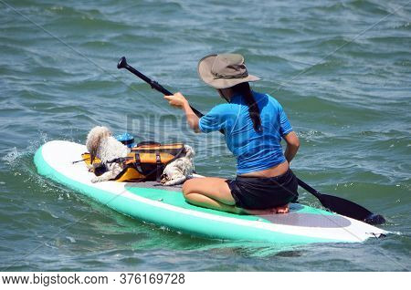 Young Woman Paddle Boarder With Her Pet Dog Aboard.