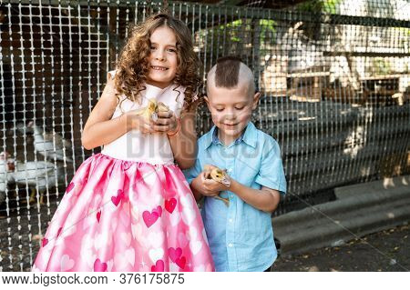 Happy Brother And Sister On A Bird Farm Are Holding Ducklings In Their Arms