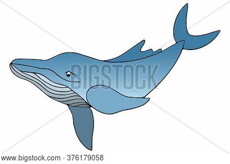 Blue Whale. Underwater Monster. Vector Stock Illustration. White Isolated Background. Plankton Marin