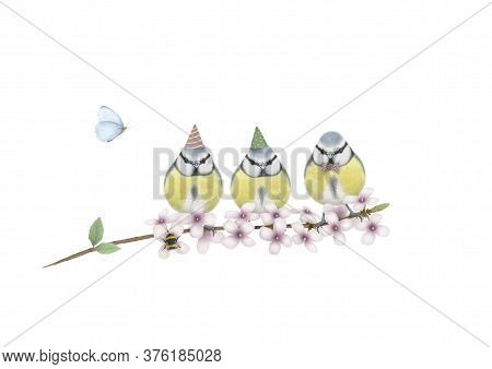 Cute Hand Drawn Illustration Of Three Blue Tits With Birthday Party Hat And Bow Tie, On Branch With