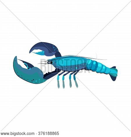 Blue Lobster Illustration. Mollusc, Ocean, Seafood. Nature Concept. Illustration Can Be Used For Top