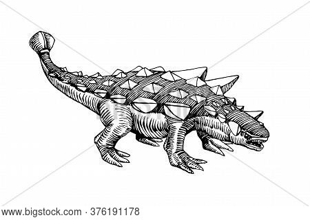 Prehistoric Jurassic Reptile, Herbivorous Ankylosaurus Dinosaur With A Plate Armor & Mace On Its Tai