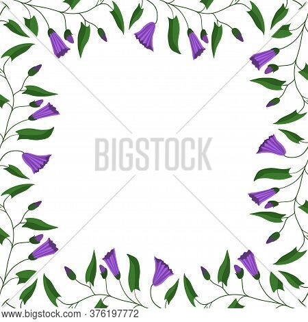 Flower Frame. Flowers And Leaves Of The Field Bindweed. Vector Illustration