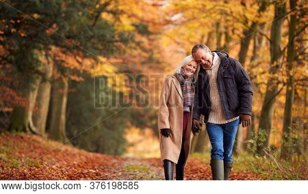 Loving Senior Couple Holding Hands As They Walk Along Autumn Woodland Path Through Trees Together