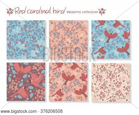 Set Of Seamless Patterns With Red Cardinal Birds And With Floral Elements. Vector Image