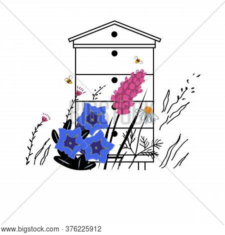 Mountain Flowers Vector Sketch Illustration. Alpine Meadow Honey Concept With Beehive In Summer. Api