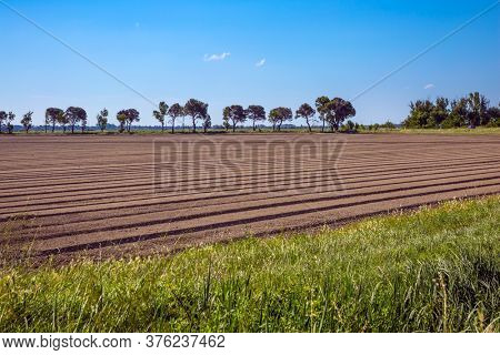 Hot summer day in late spring. Plowed farm fields. The huge nature reserve Camargue by the sea. The Mediterranean coast of France. Concept of eco and photo tourism