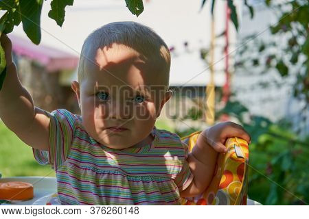 Baby In The Shadow Under A Tree, A Beautiful Baby Hid From The Heat Under A Tree, Shadows On The Fac